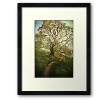 The Path to Brighter Days Framed Print
