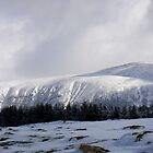 Mountain Panoramic by Barry Hobbs