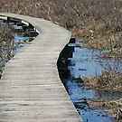 Boardwalk by SpiritFox