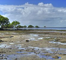 Low Tide At Sandstone Point by Terry Everson