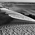 """Patterns Of The Desert"" by Heather Thorning"