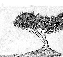 A BW Tree by afonso