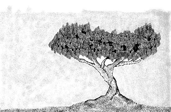 A BW Tree by afonso