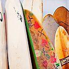 Surfboards by Lynnette Peizer