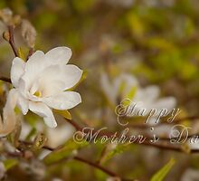 Mother's Day card - Blossom by Magdalena Warmuz-Dent