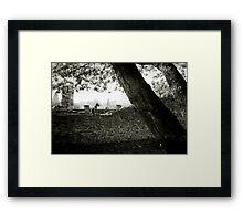 Guarding Framed Print