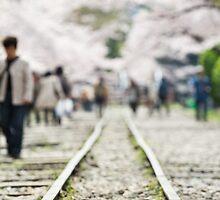 Kyoto Springtime by Sam Ryan