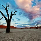 Dead Vlei at Sunrise by Jill Fisher