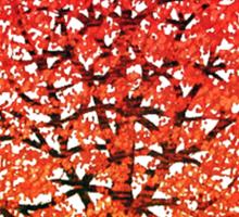 Maple tree 2 Sticker