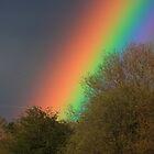 Rainbow by Doug McRae