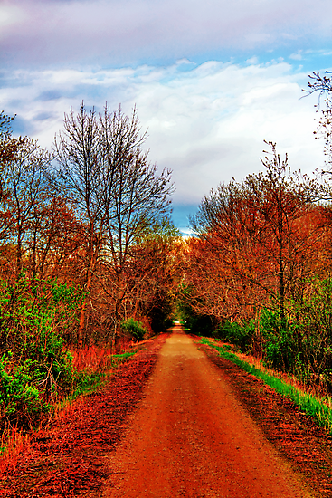 Trail To Somewhere by EBArt