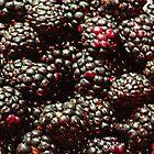 blackberries by NIKULETSH