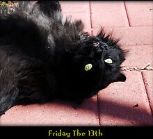 Friday The 13th by jodi payne