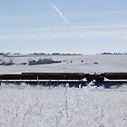 Winter Railroad by snhood