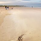 Bamburgh beach No2  by StephenRB