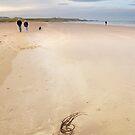 Bamburgh beach No2  by StephenRB