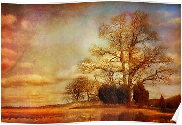 Landscape , textured photo by Bigganvi
