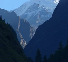 Pines and Mountains near Dharapani by SerenaB