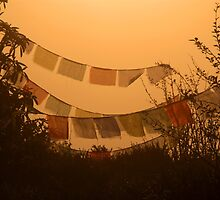 Prayer Flags and Mist Poon Hill by SerenaB