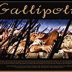 Gallipoli by Richard  Gerhard