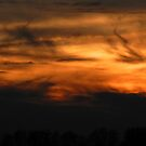Fire in the night sky by Heather Crough