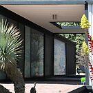Case Study House 21, Pierre Koenig, Modern Architect by Jane McDougall
