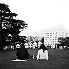 Alamo Square by Patrick T. Power