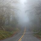 Foggy country road by Kathleen Hamilton