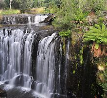 Guide Falls, Tasmania. by Terry Everson