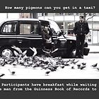 How many pigeons can you get in a taxi? by YoungPoet