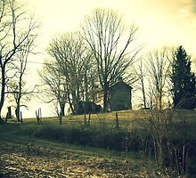 House on the Hill by tanya breese