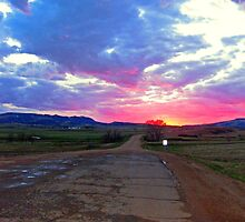 Road of color by Erykah36