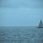 Sailing Blue by Barry Hobbs