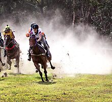 Bush Racing by Sue  Thomson