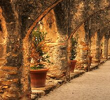 Arched Walkway by SJBroadmeadow
