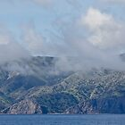 Approaching Santa Catalina Island by Celeste Mookherjee