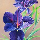 Dark Knight Purple Iris by lanadi