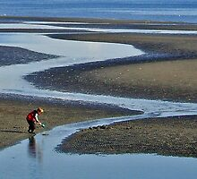 Clam Digging by Lesliebc