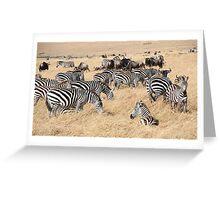 Zebra & Wildebeest Migration Greeting Card