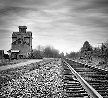 Old Grain Elevator by Steve Silverman