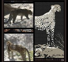 CHEETAH-DO READ THE LIFE STORY OF THIS CHEETAH dedicated to endangered animal by Sherri     Nicholas