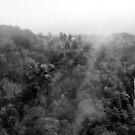 Japan Waterfall Landscape 01 - BW by Elvis Diéguez