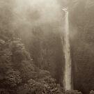 Japan Waterfall Landscape 02 - Sepia by Elvis Diéguez