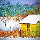 Vivid Snowfall by Sandra Lee Woods