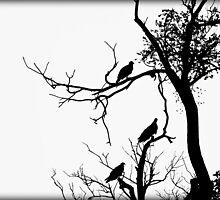Vulture Silhouette by Sheryl Gerhard