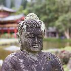 Temple Valley Buddha by Darakian