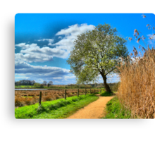 A Picture Book Countryside Scene   Canvas Print