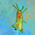 Grasshopper by evisionarts