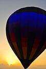 Balloon Over Paradise by Kim McClain Gregal