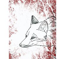 Painted Fox Photographic Print
